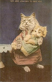 Vintage 'We Are Longing to See You' Cats Postcard