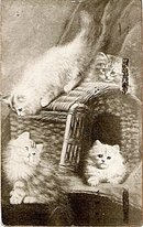 White Cats and Kittens in Basket Panel 1910 Postcard