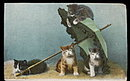 Tucks 'Little Mischiefs' Kittens w Umbrella Postcard