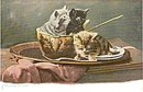 Tucks 'Waiting for More' Kittens/Cats 1907 Postcard