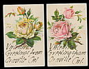 2 Greetings From Oraville, CA Roses 1908 Postcards