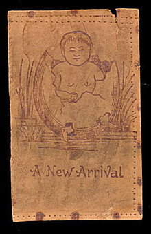 1906 Leather 'A New Arrival' Baby Hatching Postcard