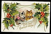Lovely Christmas Cat/Kitten in Holly 1908 Postcard