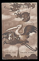 'A Busy Time for Storks' 1907 Postcard