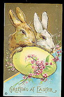 Gorgeous Greetings at Easter Rabbits Postcard