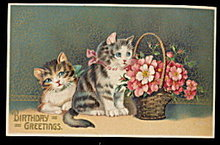 1908 Birthday Cats /Kittens with Flowers Postcard