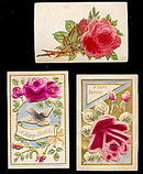 3 Velvet/Felt Roses or Flowes Greetings 1907 Postcards