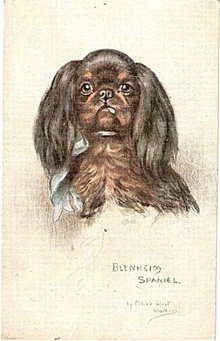 Tucks 'Blenheim Spaniel' Maud West Watson Postcard