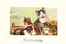 "1907 ""Pussies at Play"" Cat PFB Postcard"