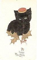 Black Cat in Felt New Years 1907 Postcard