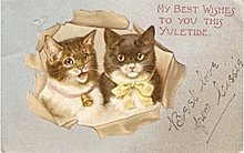 Yuletide Kitten/Cat with Ribbons 1906 Postcard