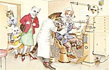 Early Mainzer Dressed Cats Belgium Dentist Postcard