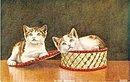 'Wide Awake'  Kittens/Cats in a Basket Postcard