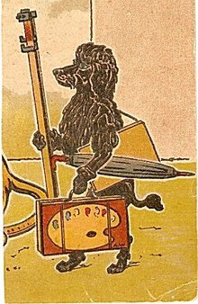 A W Signed Poodle with Palette Artist Postcard