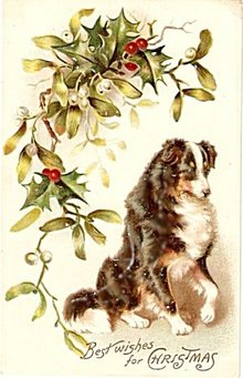 Best Wishes for Christmas 1908 Postcard