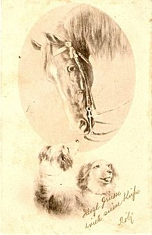 1902 Horse with Dogs Artist Postcard