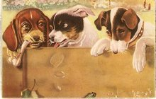 Great Artist Puppies/Dogs Vintage Postcard  Some wear on edges and corners. Used with no postmark  Appears to be Spanish  Circa: 1915  Condition: Used  Publisher: Great Artist Puppies/Dogs Vintage Postcard