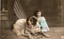 Great 1907 Saint Bernard Dog Artist Postcard