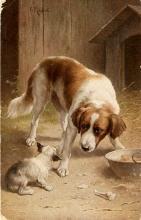 C.Reichert Dog/Puppy over Food 1913 Postcard