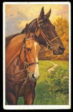 Two Horses Artist 1914 Postcard