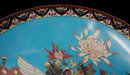 82.6744 19th C. Cloisonné Charger with Birds & Flowers