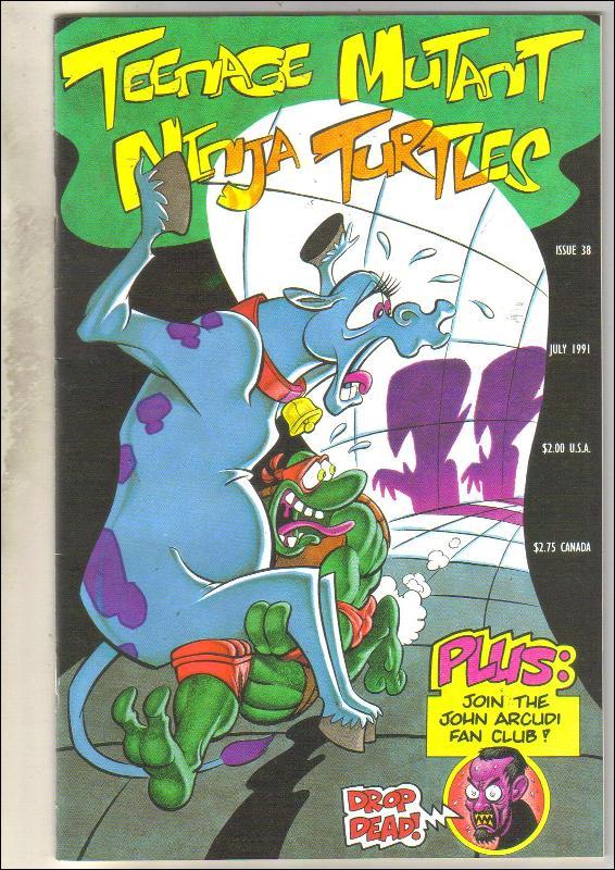Teenage Mutant Ninja Turtles #38 comic book near mint 9.4