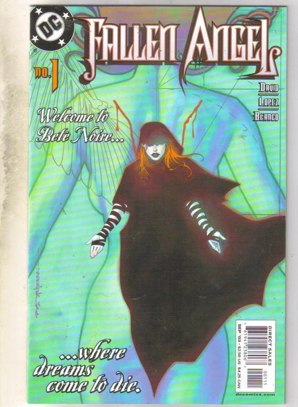 Fallen Angel #1 comic book near mint 9.4