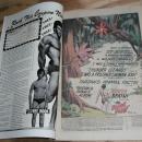 Tarzan Lord of the Jungle #234 comic book very fine 8.0