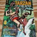 Tarzan of the Apes #193 comic book nm 9.4