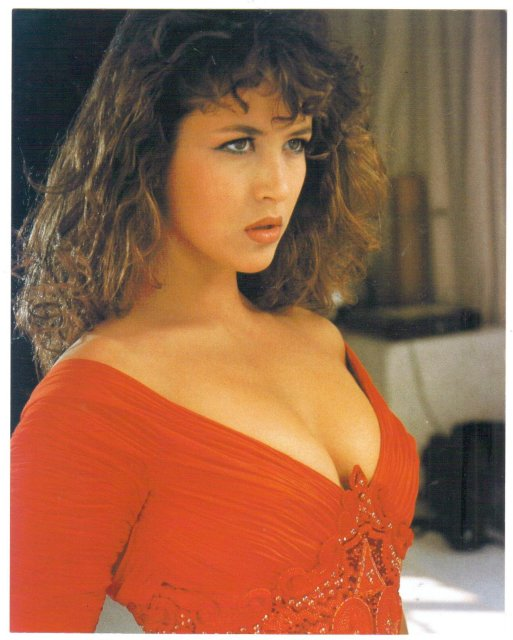 Sophie Marceau color 8 by 10 glossy photo