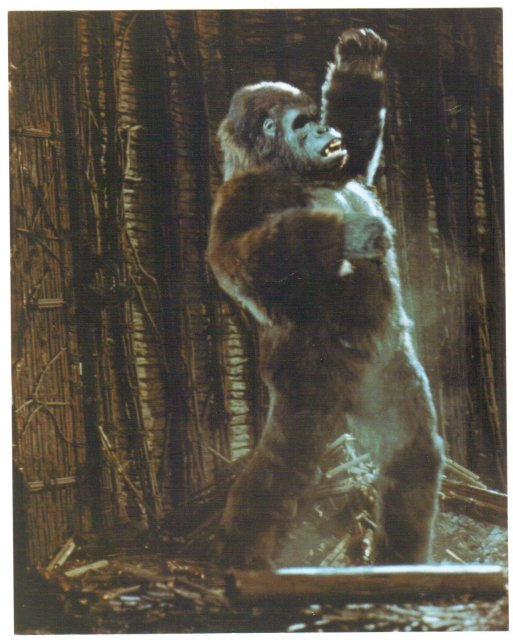 King Kong color glossy photograph 8 by 10
