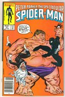Peter Parker, the Spectacular Spider-man #91 comic book near miont 9.4
