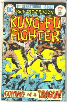 Richard Dragon Kung-Fu Fighter #1 comic book very good 4.0