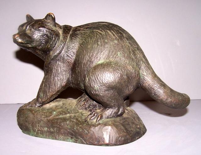 Bronze Raccoon
