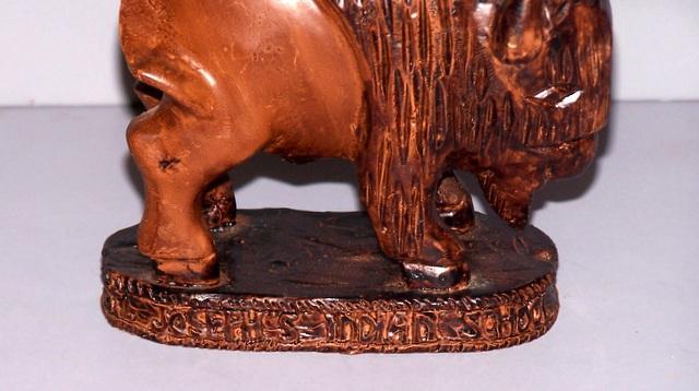 Buffalo from Saint Joseph's Indian School