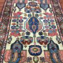 Vintage Persian Tribal  Bakhtiari Rug-550