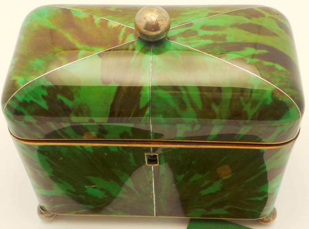 Rare Tortoiseshell Green Tea Cady