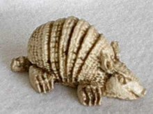 Small Chalk Appearing Armadillo from Mexico