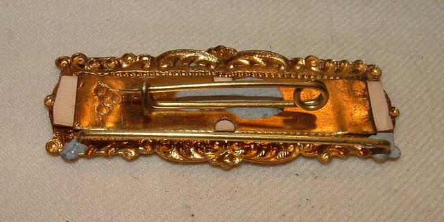 Flint, 1901 Convention Pin