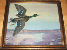 Framed Frank Scott Clark Oil on Canvas of Wild Mallard Duck in Flight