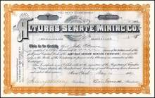 Alturas - Senate Mining Co. 1887 - New York