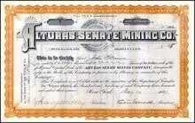 Alturas - Senate Mining Co. 1887 - New York