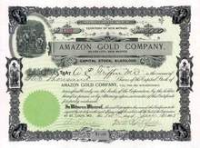 Amazon Gold Company 1905 - Silver City, New Mexico