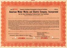 American Water Works and Electric Company, Incorporated