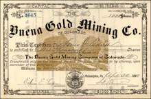 Buena Gold Mining Co of Colorado 1880