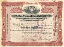 Buffalo Hump Mining Company 1899 - New York