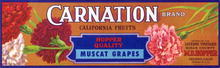 Carnation Brand California Fruits Label