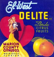 El - West Delite Florida Citrus Label