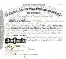 European & American Steam Shipping Company Limited 1857