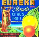Eureka Citrus Fruit Label - Indian